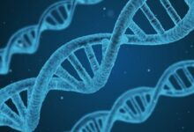 Photo of Фейк: «Вакцина от COVID-19 изменяет ДНК, а привитых людей будут патентовать миллиардеры»